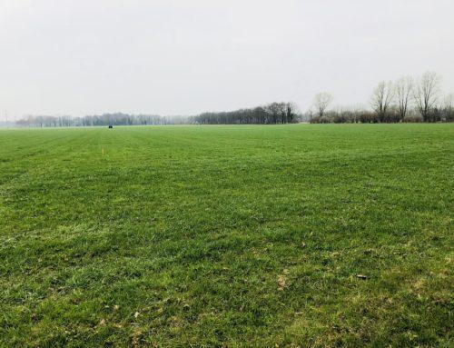 Aanvullende metingen werking Groene Weide Meststof